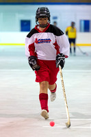 0817 Ball Hockey